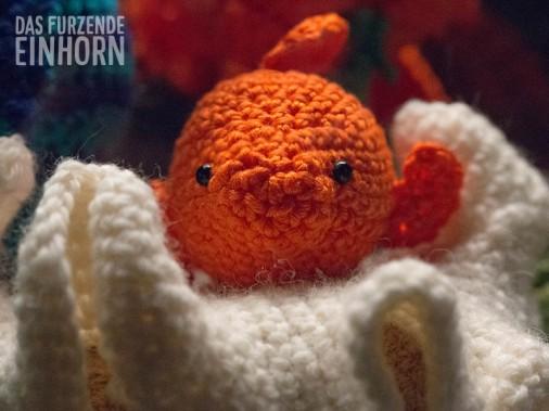 Aquarium-smallgoldfish