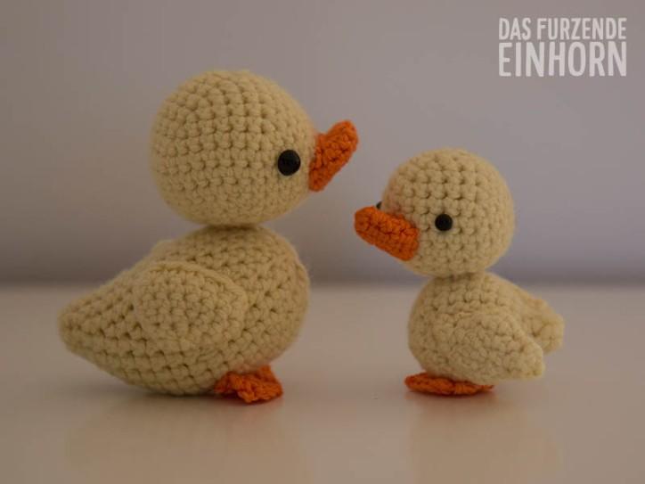 Ducklings-around1