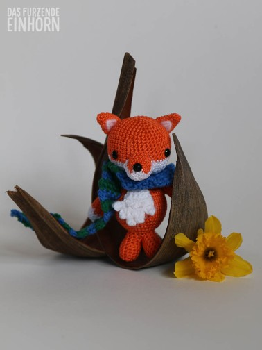 Foxes_11