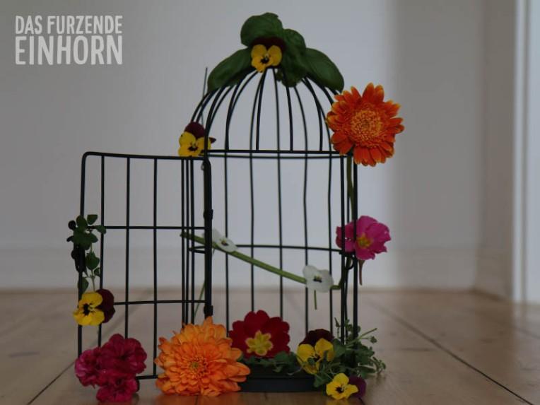 Elfen-Reigen-cage